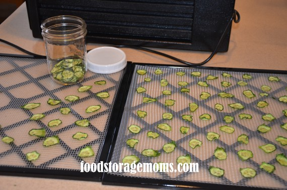 How to Dehydrate Cucumbers   by FoodStorageMoms.com
