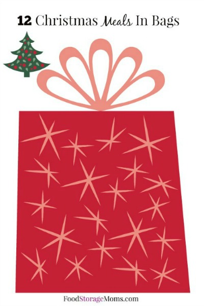 12 Christmas Meals In Bags   via www.foodstoragemoms.com