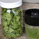 How To Dehydrate Spinach To Make Flakes Or Powder