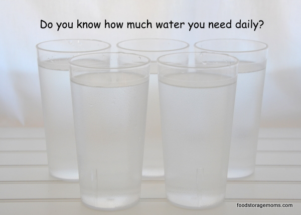 How To Be Prepared By Storing Water Today | via www.foodstoragemoms.com