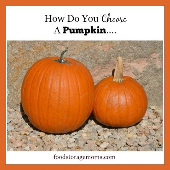 Pumpkins-How Do You Choose A Pumpkin | by FoodStorageMoms.com