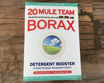 15 Reasons Why I Store Borax For Everyday Use