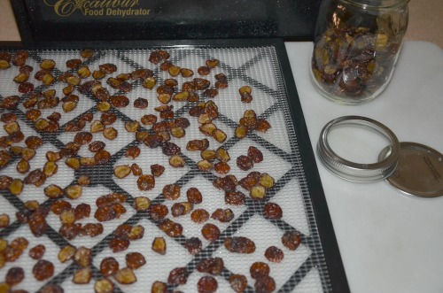 dehydrate grapes