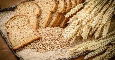 make whole wheat bread