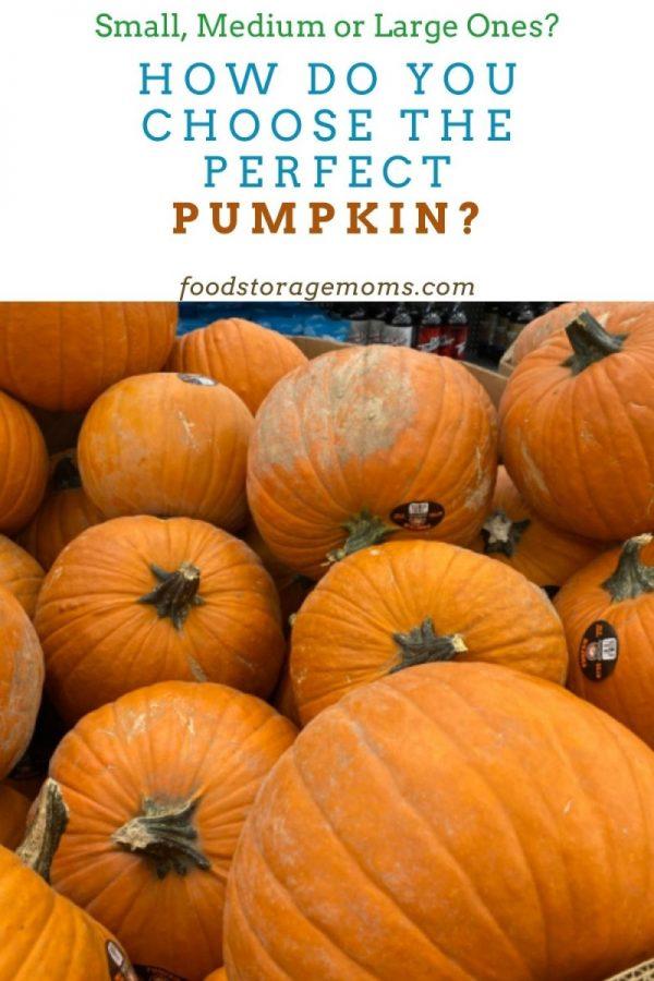 How Do You Choose The Perfect Pumpkin