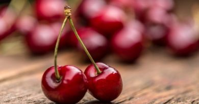 Dehydrate Cherries
