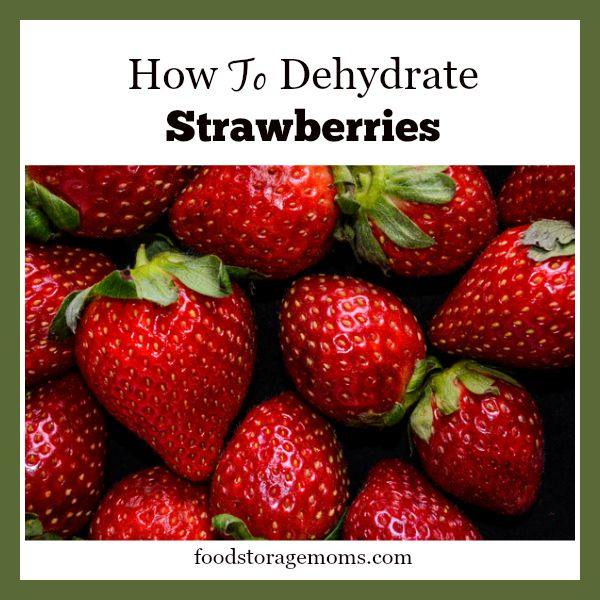 How To Dehydrate Strawberries-Healthy Snack | by FoodStorageMoms.com