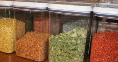 organize food storage