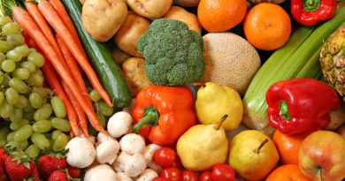 Why You Need To Store The Right Food Storage