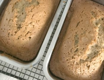 Zucchini Bread Recipe-The Best One In The World
