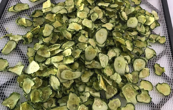 Dehydrated cucumber slices on rack
