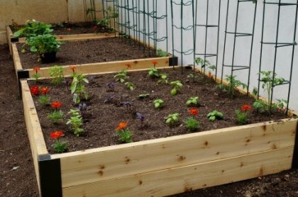 Gardens For Two People-Yes You Can Do It
