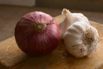 Dogs and Onions/Garlic
