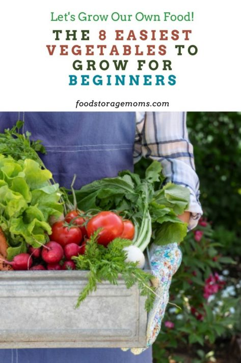 The 8 Easiest Vegetables To Grow For Beginners