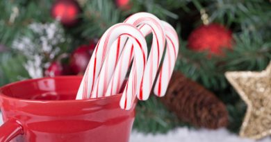 20 Festive Peppermint Desserts