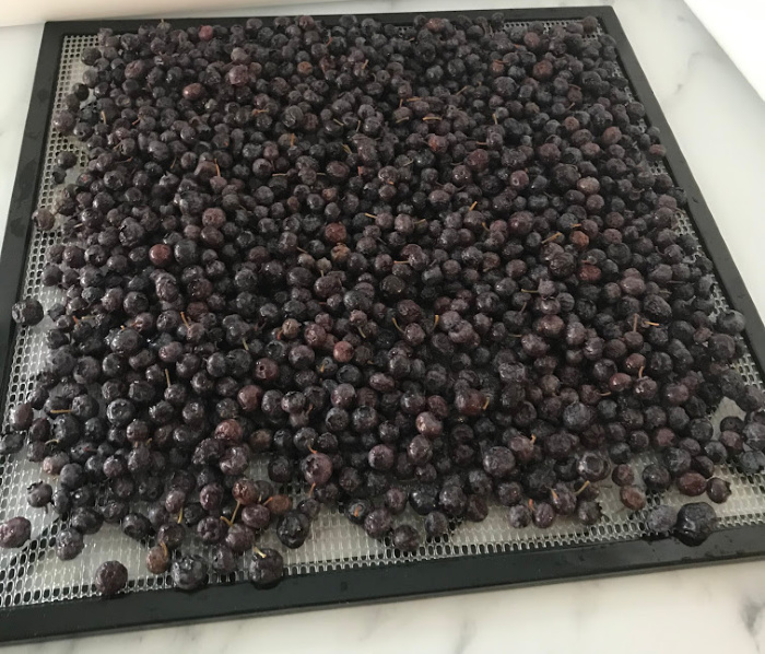 After thawing the berries spread then evenly on a dehydrating rack