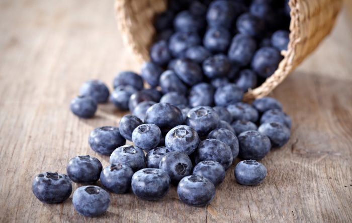 Dehydrate Blueberries and Make Powder
