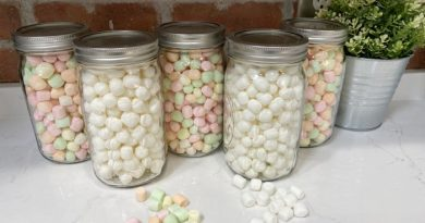 Dehydrating Marshmallows For Hot Cocoa