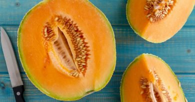 Cantaloupe: Everything You Need to Know