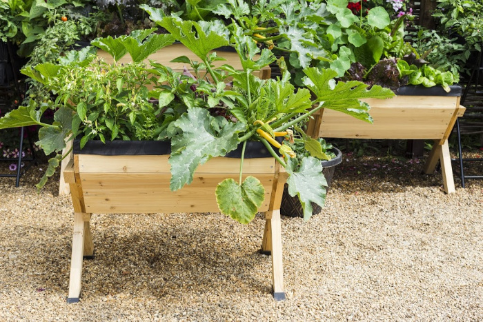 Container Gardens: Everything You Need To Know