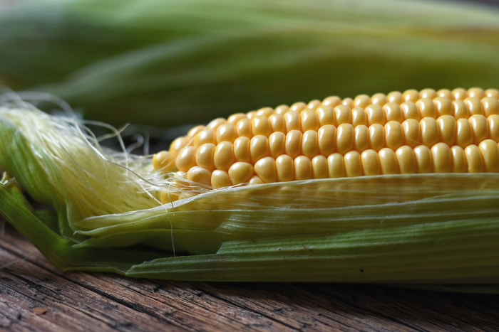 Corn: Everything You Should Know