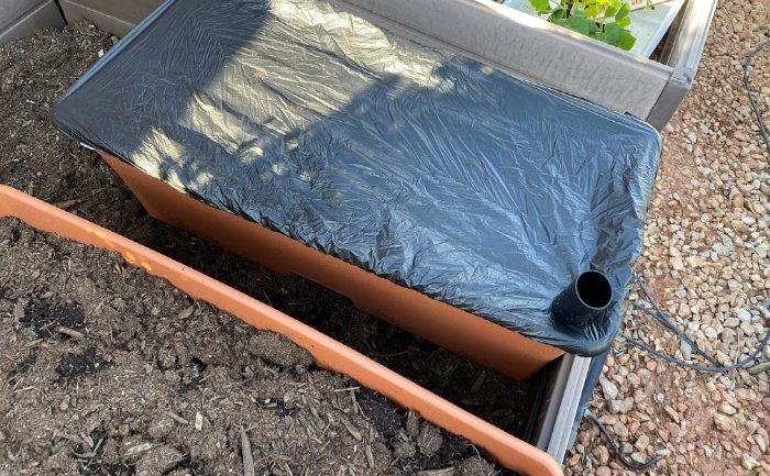 How To Plant Vegetables On Your Deck