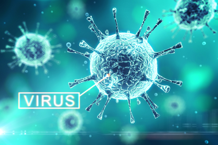 What Are Viruses: Everything you Need to Know