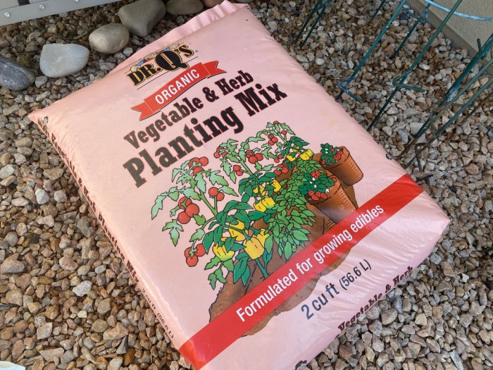 What to Plant In March Soil