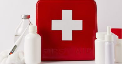 First Aid Kit Ideas For Your Pet