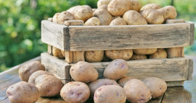 Potatoes in a Box