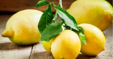 Lemons: Everything You Need to Know