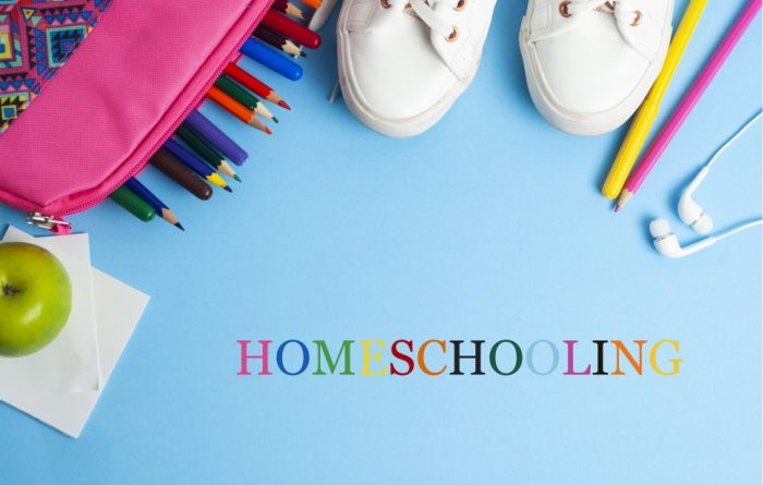 Tips and Tricks To Help You Homeschool Your Kids