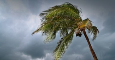 What to Do Before a Tropical Storm Hits
