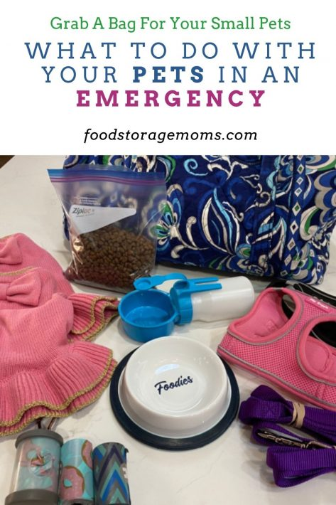 What to do With Your Pets in an Emergency