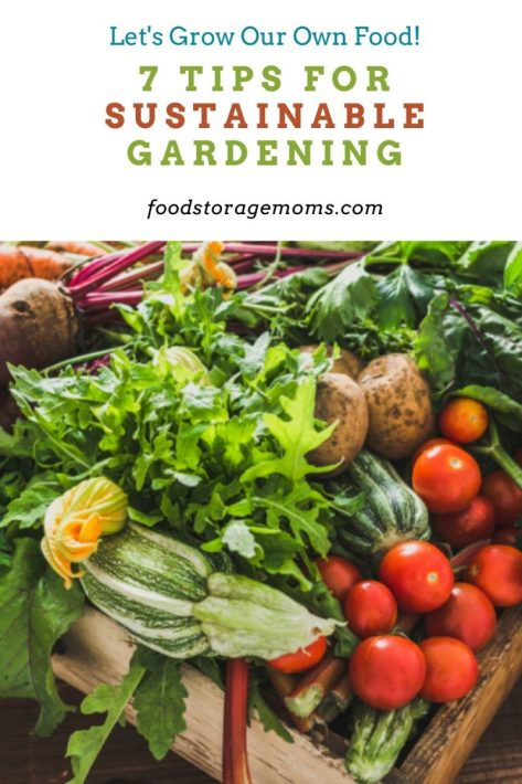 7 Tips for Sustainable Gardening