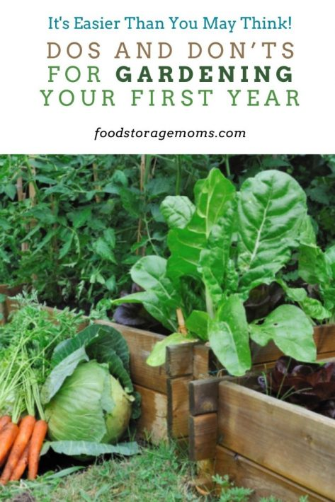 Dos and Don'ts for Gardening Your First Year