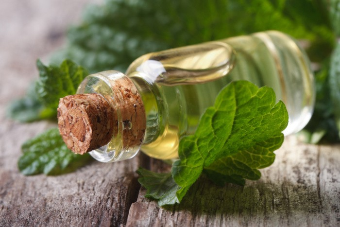 Lemon Balm Herbal Remedies