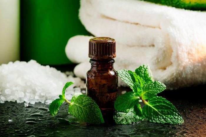 Peppermint Herbal Remedies