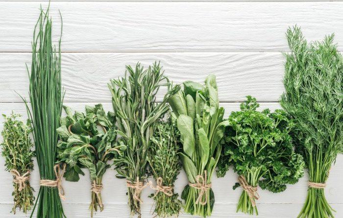 Herbs on White Board