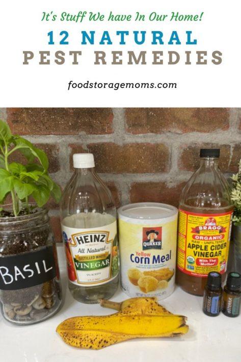 12 Natural Pest Remedies