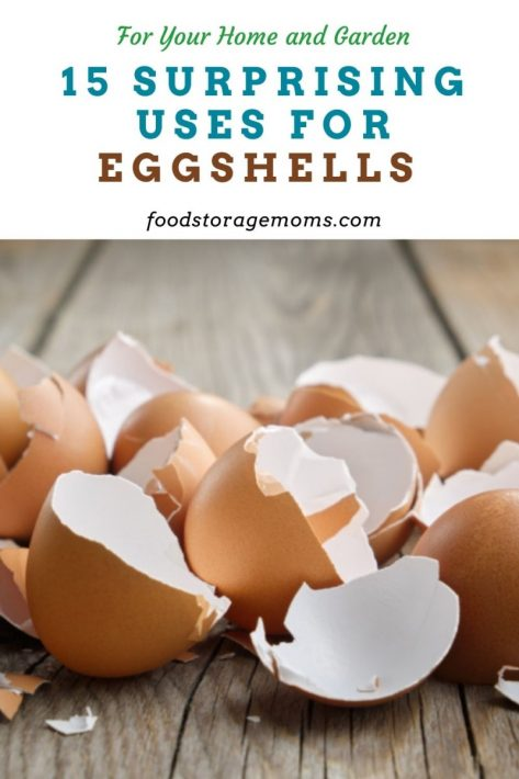 15 Surprising Uses for Eggshells for Your Home and Garden