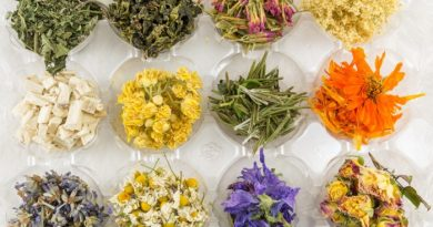 Herbal Plants for Tea