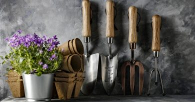 Top Gardening Tools You Need