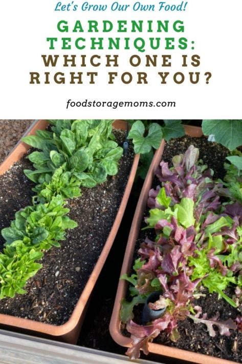 Gardening Techniques: Which One is Right for You?
