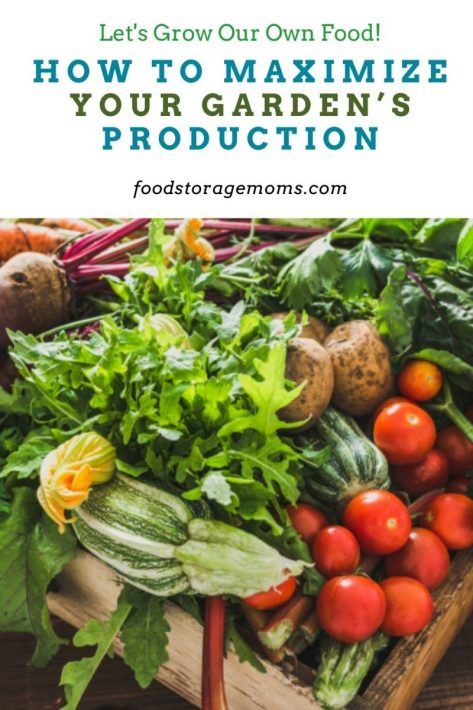 How to Maximize Your Garden's Production