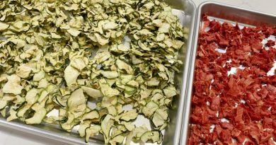 15 Foods You Should Be Dehydrating