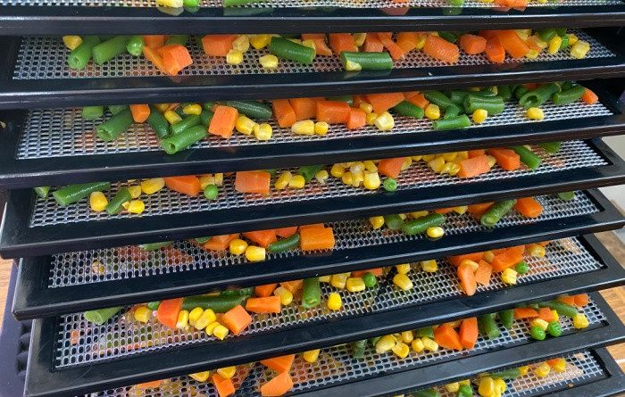 15 Tips for Buying Your First Dehydrator