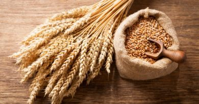 Wheat: What You May Not Know