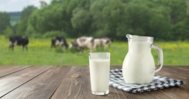 Milk: Everything You Need to Know