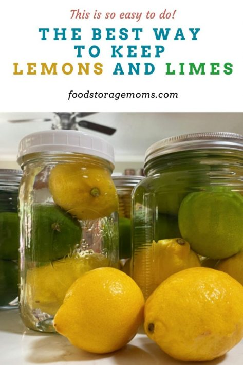 The Best Way To Keep Lemons and Limes